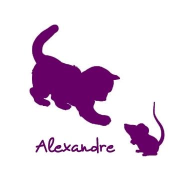 Stickers prénom chat et souris