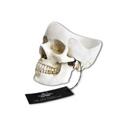 Vide-poche Crâne