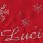 Tablier de Noël avec broderie argentée