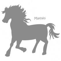 Stickers personnalisés poney