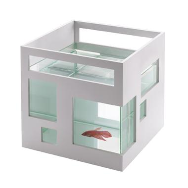 Aquarium Design hôtel