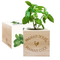 EcoCube Maman Poule Maman Cool