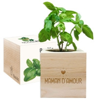 EcoCube Maman d'amour