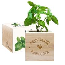 Ecocube papy poule cool