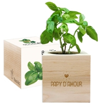 Ecocube papy d'amour