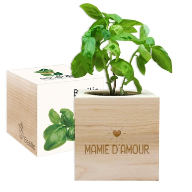 EcoCube Mamie d'amour